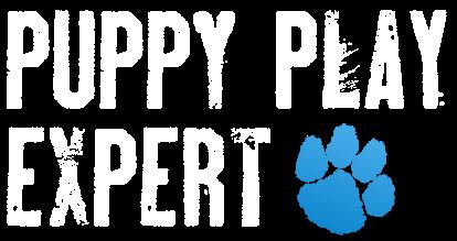 Puppy Play Expert